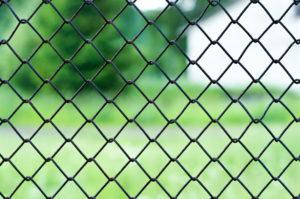 רשת לגדר